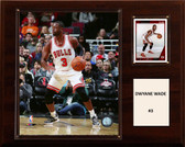 "NBA 12""x15"" Dwyane Wade Chicago Bulls Player Plaque"