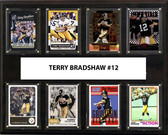 "NFL 12""x15"" Terry Bradshaw Pittsburgh Steelers 8-Card Plaque"