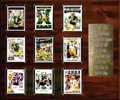 "NFL 15""x18"" Brett Favre Green Bay Packers Career Stat Plaque"