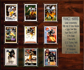 "NFL 15""x18"" Franco Harris Pittsburgh Steelers Career Stat Plaque"