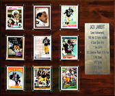 "NFL 15""x18"" Jack Lambert Pittsburgh Steelers Career Stat Plaque"