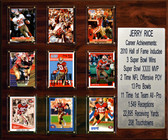 "NFL 15""x18"" Jerry Rice San Francisco 49ers Career Stat Plaque"