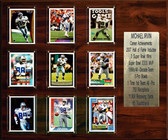 "NFL 15""x18"" Michael Irvin Dallas Cowboys Career Stat Plaque"