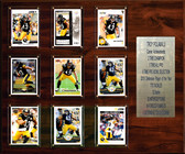 "NFL 15""x18"" Troy Polamalu Pittsburgh Steelers Career Stat Plaque"