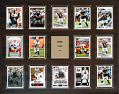 "NFL 16""x20"" Derek Carr Oakland Raiders Player Plaque"