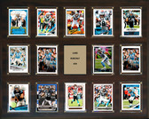 "NFL 16""x20"" Luke Kuechly Carolina Panthers Player Plaque"