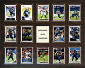 "NFL 16""x20"" Seattle Seahawks Super Bowl 48 - 14-Card Plaque"