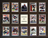 "NFL 16""x20"" New England Patriots Super Bowl 49 - 14-Card Plaque"