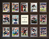 "NFL 16""x20"" New England Patriots Super Bowl 51 - 14-Card Plaque"