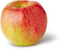 Twenty Ounce Apple (dwarf)