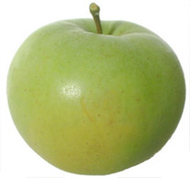 Freyberg Apple (medium)