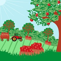 An Autumn Orchard Ramble - date and cost to be confirmed