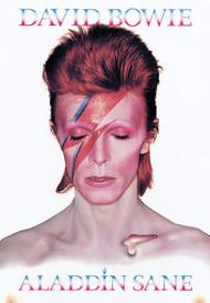 Tin Sign David Bowie 30230