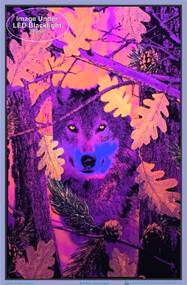 "Poster Autumn Wolf Poster Flocked Blacklight 24""x36"" Wall Art bl1972"