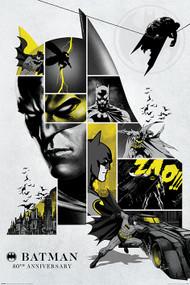 "Poster Batman 80Th Anniversary 24""x36"" Wall Art p4559"