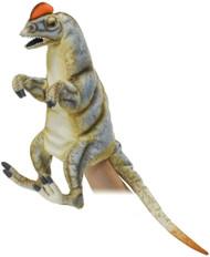 "Hand Puppet Hansa Dilophosaurus 19"" 7754"