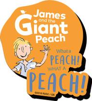 Magnet Dahl Peach Funky Chunky 95728