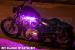 2pc Classic Pink Motorcycle LED Lights