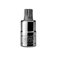 Capri Tools 14mm M14 XZN Triple Square Bit, 3/8-Inch Drive