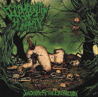 Decomposition of Humanity - Sadistic Fetal Extraction