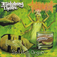 Embalming Theatre/Torture Incident - Split