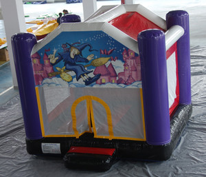 Magic Theme Bouncer Indoor Playground System | Cheer Amusement CH-IB140103