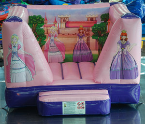 Princess Theme Bouncer Indoor Playground System | Cheer Amusement CH-IB120202