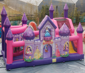 Princess Castle Playground System | Cheer Amusement CH-IF130202