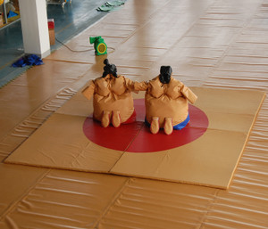 Sumo Suit Playground System | Cheer Amusement CH-II140137