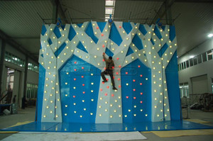 Three Trees Climbing Wall Indoor Playground System | Cheer Amusement CH-CW20150112-1