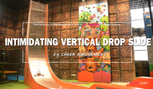 Intimidating Vertical Drop Slide by Cheer Amusement