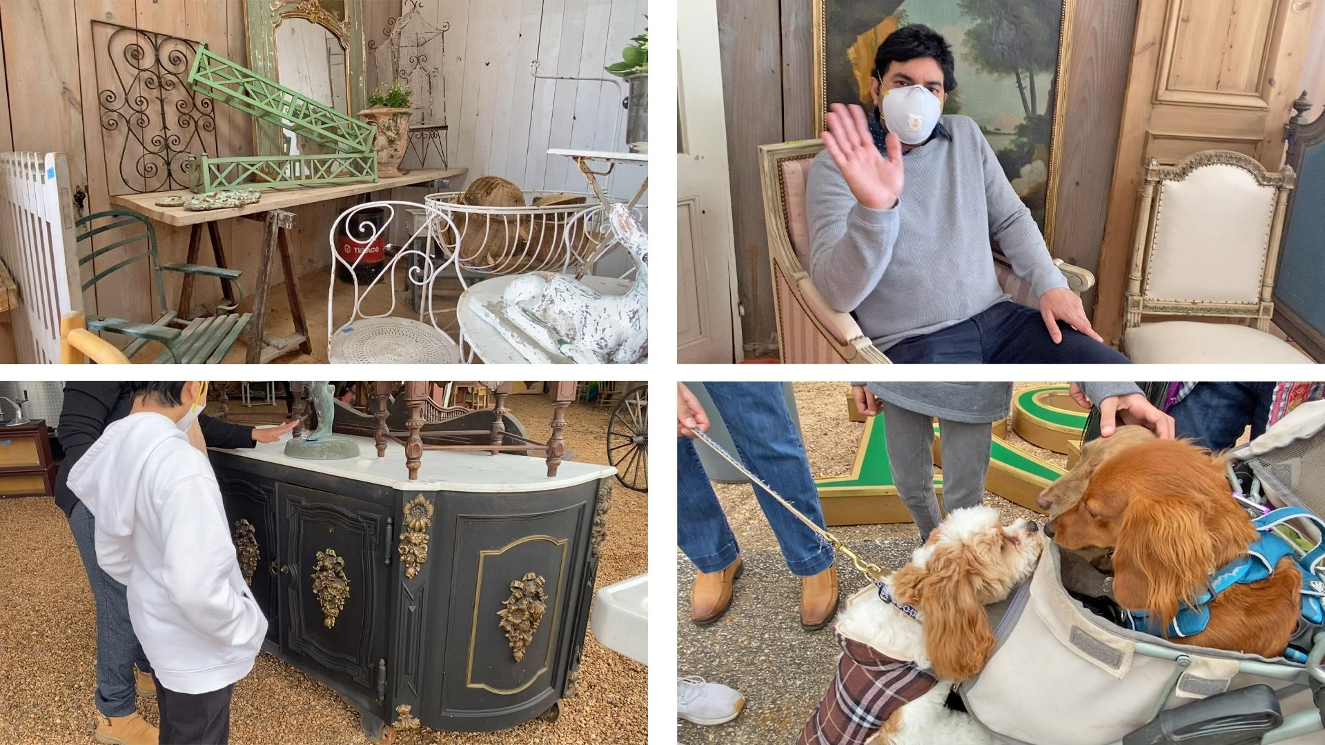 Amitha Verma's family shopping at Round Top antique fair, pets are welcome!