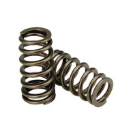 6.0 & 6.4 Ford High Rev Valve Spring Set