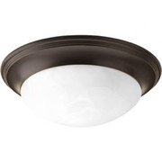 Progress Lighting™ - Fixture - 2 Flush Mount