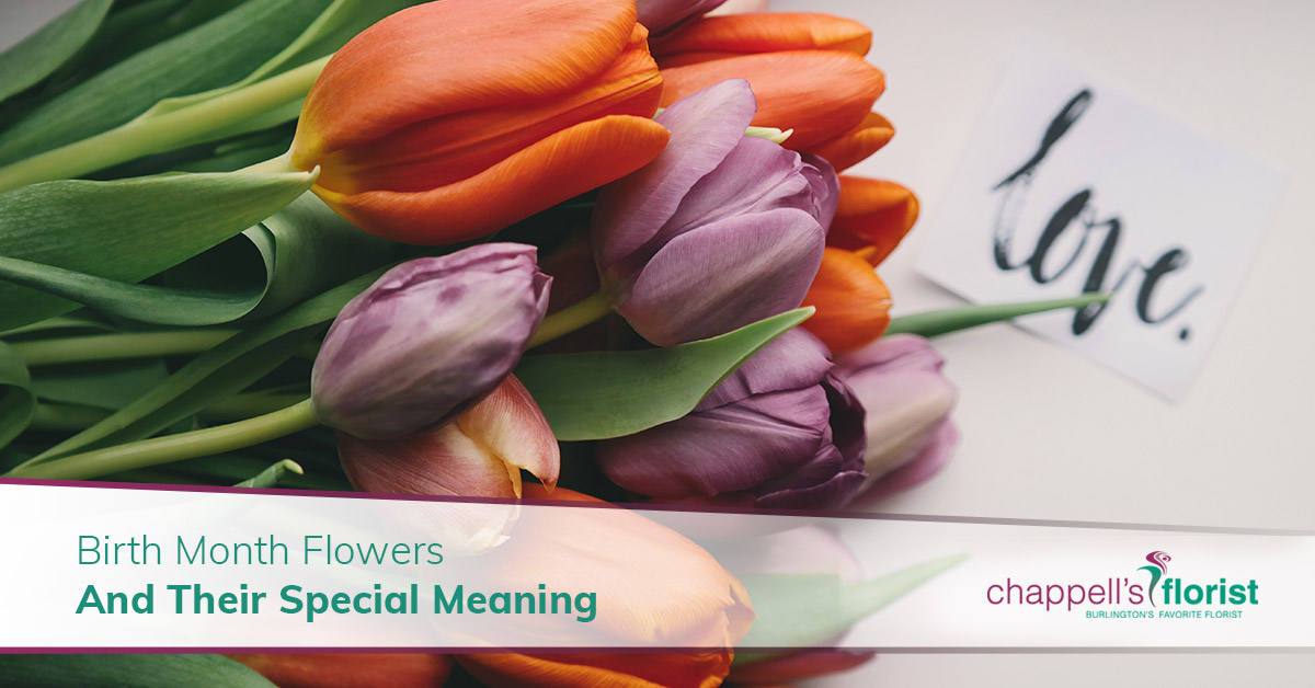 915256a50c838 Birth Month Flowers And Their Special Meaning - Chappell's Florist