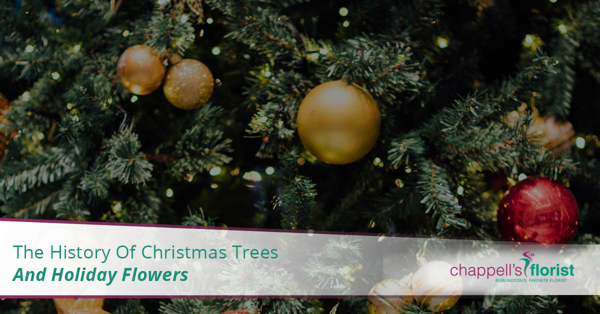 Where Did Christmas Trees Originate.The History Of Christmas Trees And Holiday Flowers