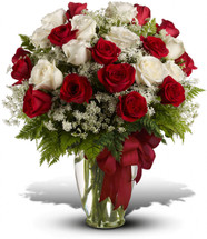 divine two dozen red and white roses - charming.