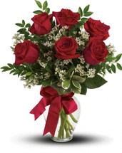 Thoughts of You -  6 Red Roses
