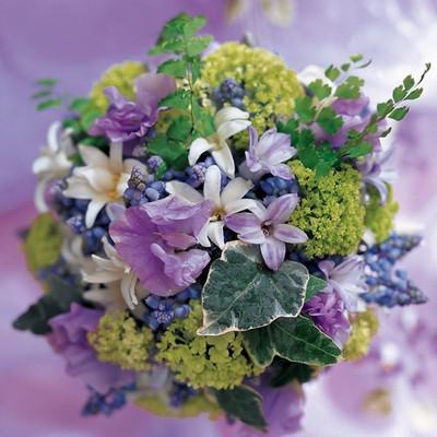 Hydrangea, Snow on the Mountain, Freesia Bouquet