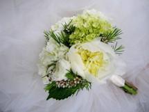 Peony, Hydrangea, Garden Roses, & Waxflower Bouquet