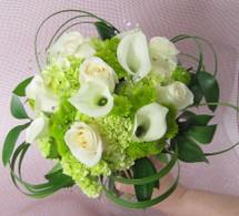 Callas & Hydrangeas