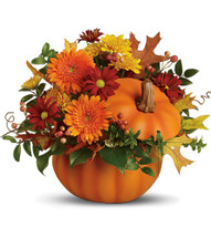 Somethin' Pumpkin
