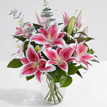 Fragrant Stargazer Lilies designed and delivered in a Clear Glass Vase.