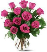 Dozen Hot Pink Roses Arranged