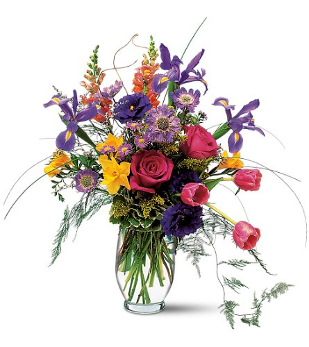 Colorful flowers bursting with energy shower their joyous spirits on everyone around