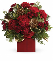 Warm up cold winter days with good cheer! Red carnations and gold pinecones are delightfully arranged with winter greens in a rich red cube.