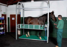 Horse Weigh Scale Ascot