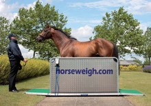 Horse Weigh Scale Olympic model