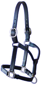 Halter Sale Yearling 2 Buckle Crown,Buckle Chin