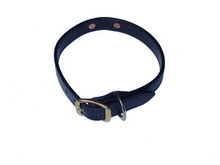 Dog Collar Double Stitched with Engraved Brass NamePlate